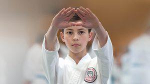 GKR Karate Kata Image