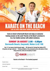 Flyer for Karate on the Beach Class in Barmouth Beach