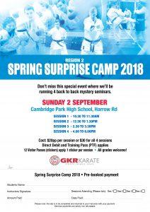 GKR Karate flyer for Region 2 spring surprise camp