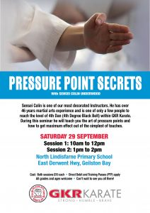 Tasmanian Karate Pressure Points Secrets Flyer