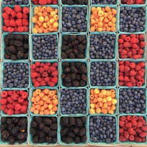 Colourful Fruits