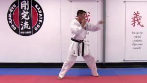 Karatercise Volume 1